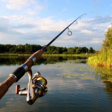 Дөрөвдүгээр сарын 1-нээс зургаадугаар сарын 15-ныг хүртэл загас агнахыг хуулиар хориглодог