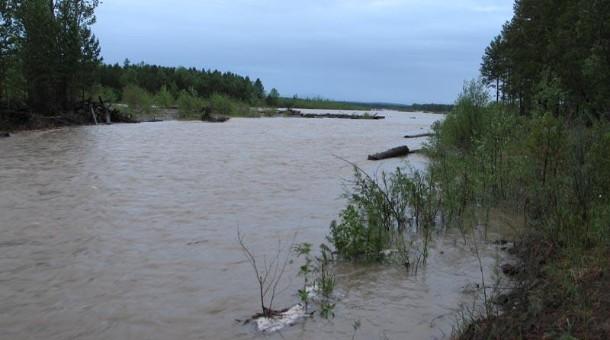 Хэнтийд аялж явсан 12 хүний гурав нь голын усанд энджээ