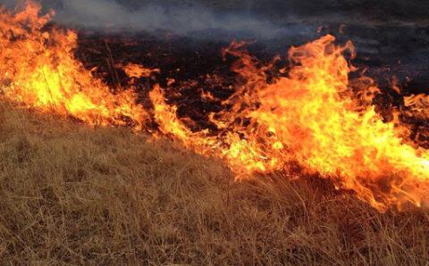 Түймэр гарах эрсдэл өндөр байгаа тул урьдчилан сэргийлэх арга хэмжээ авахыг анхааруулж байна