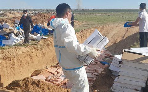 Чанарын шаардлага хангахгүй 25 тонн тахианы махыг устгалд оруулжээ