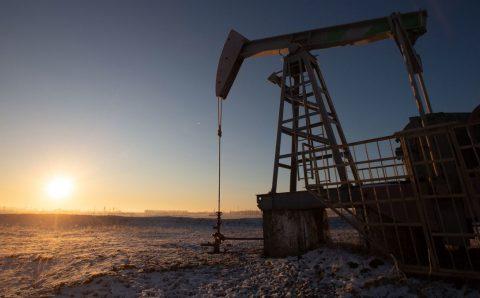 Г.Ёндон: Олон улсын зах зээл дээр газрын тосны үнэ өсөж, манайд ч мөн үнэ нэмэгдэх нөхцөл байдал бий болсон